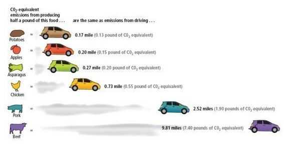 food-equvalent-of-driving