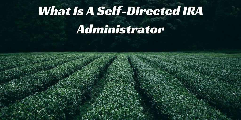self directed ira administrator